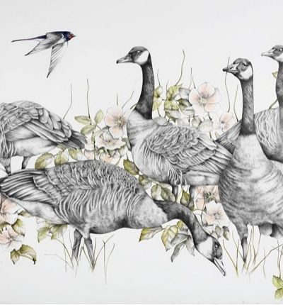 """Angry Geese Pencil on Cotton Paper 38.5"""" x 31"""""""